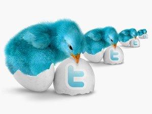 Раскрутка сайта и заработок в твиттере