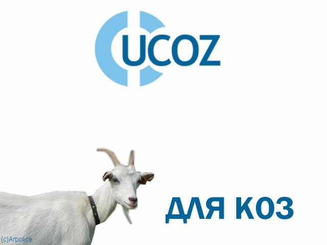 Среди услуг uCoz - создание полнофункционального сайта, блога, чата