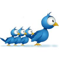 Twitter и база подписчиков